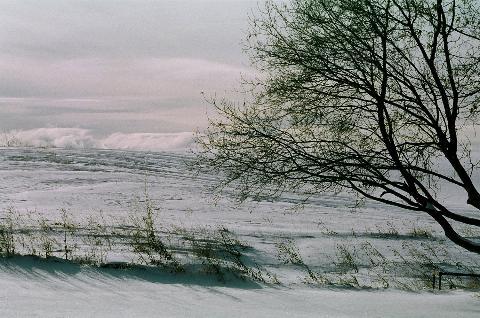 Winter auf der Farm